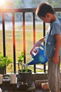 Child watering balcony garden