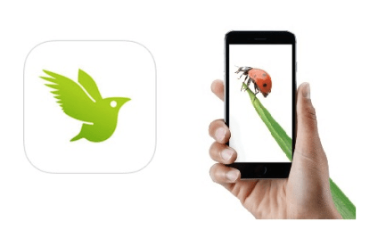 iNaturalist logo with hand holding phone