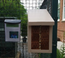 New bee box with educational flyers.