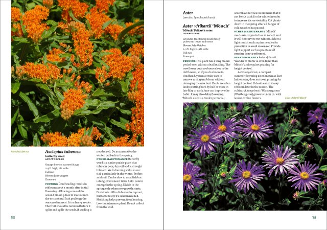 well tended perennial garden encyclpedia