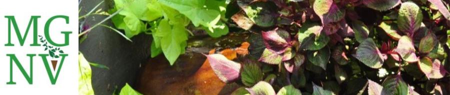 September plants