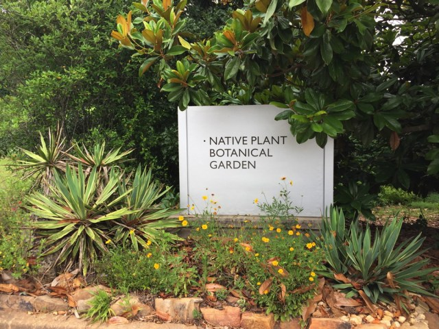 The GSU Native Plant Botanical Garden has the largest collection of native plants in Georgia.