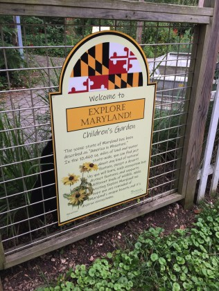 "This year's theme for the Children's Garden is ""Explore Maryland!"""