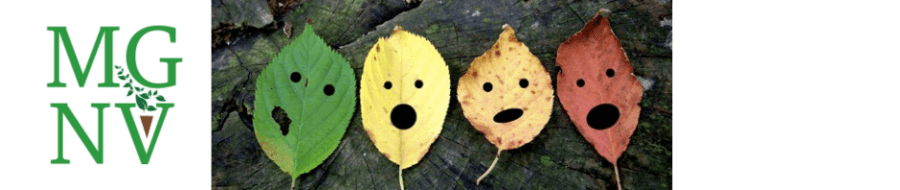 Funny Fall Leaves_Banner