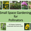 Small Space Gardening Title