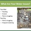 Waterwise Gardening (July 2020)