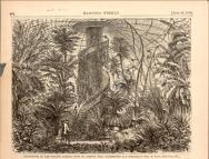 Palm House interior, 1869 (Illustration: Harper's Weekly)]