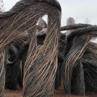 Sculptural installation on the West Lawn. Sculpture by Patrick Dougherty.