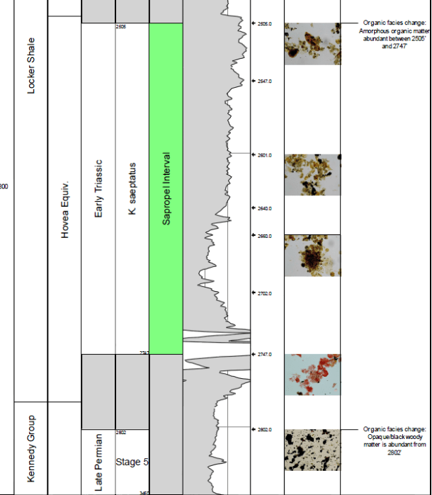 Palynofacies and Thermal maturity studies provided by MGPalaeo