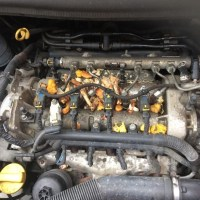 Engine with Rodents