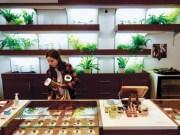 Cannaseur Marijuana Dispensary
