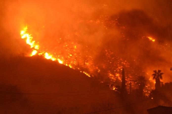 California Wildfires cannabis industry mg Retailer