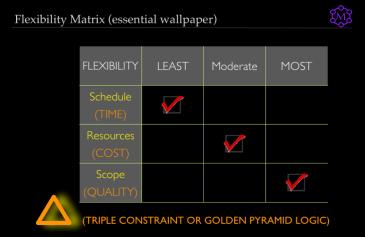 Illustrative Flexibility Matrix