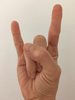 Nonverbal Expressions: How to (Not) Gesture while Facilitating