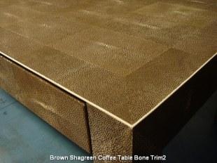 Brown Shagreen Coffee Table Bone Trim2