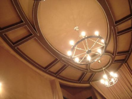Leather Ceiling w Nailhead 2_jpg