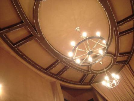 Leather Ceiling w Nailhead 2_jpg