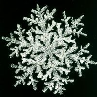 What Happened on January 28th - The Largest Snowflake Ever Recorded