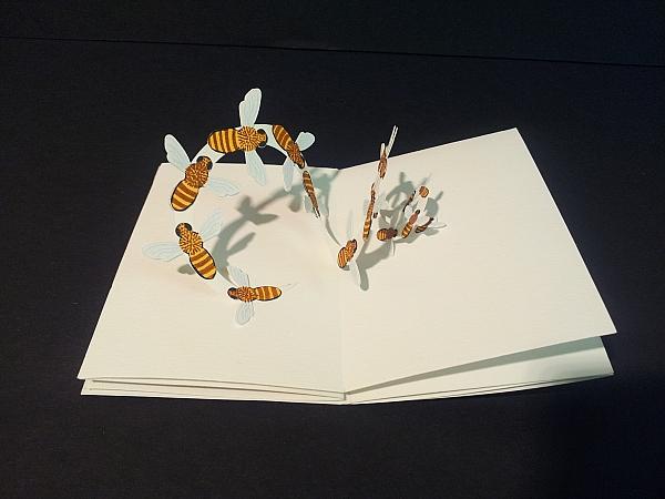 Deux cartes d'anniversaire pop-up thématiques