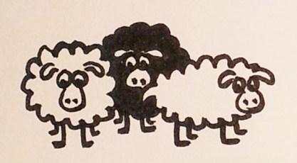 Etudes dessins de la lande, moutons, page 4 projet de livre pop-up