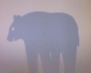 Saynète d'hiver ours. Détail ombre projetée