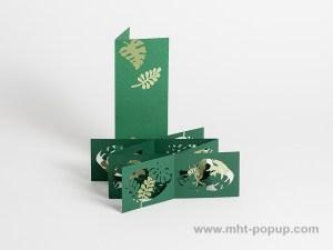 Livre d'artiste double accordéons croisés Jungle avec étui