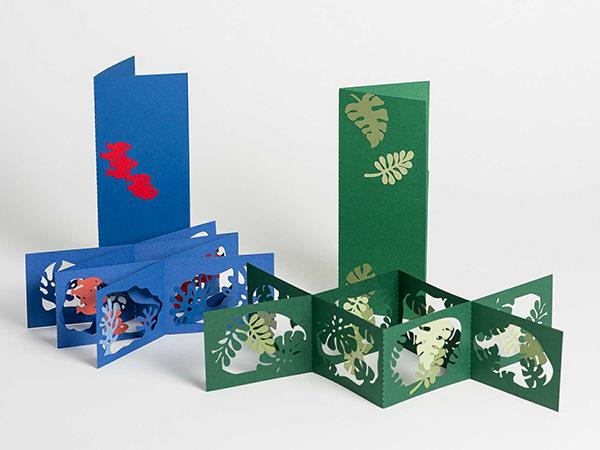 Livres d'artiste double accordéons croisés, Océan et jungle, vue d'ensemble