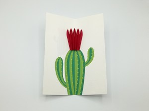 Carte pop-up Fleur de cactus, modèle fleur en éventail rouge, carte vue de dessus