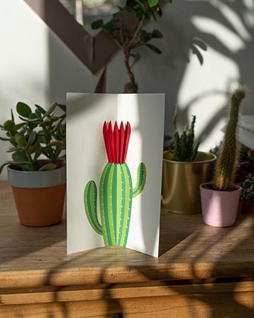 Carte Fleur de cactus Rouge mise en scène par Léa Lalonde, agence Boujou bien !