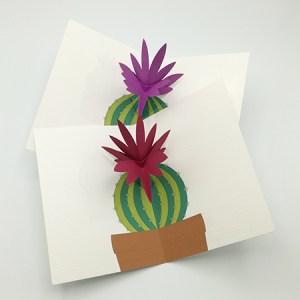 Cartes pop-up Fleur de cactus, modèle orchidée, vue d'ensemble des 2 variantes
