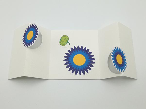 Carte à volets, motifs de fleurs de marguerite bleue, vue de dessus carte ouverte