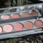 Colorescience Beauty On The Go Mineral Palette | Review, Swatches