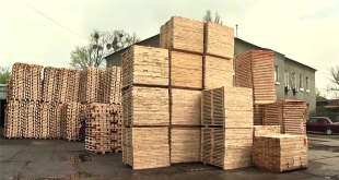 EPAL achieves a major breakthrough in the battle against EPAL Euro pallet counterfeiters in Ukraine