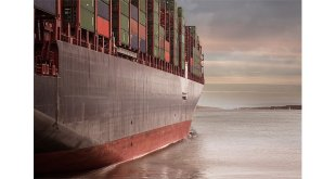 Sustainable short sea shipping solution with FCL or LCL service