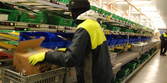 Daifuku Warehouse automation provides new growth for Riverford the veg box pioneer