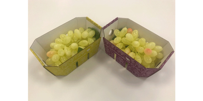 Smurfit Kappa sees surge of interest in sustainable packaging solutions for fresh produce