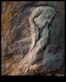 Figé dans la roche ?