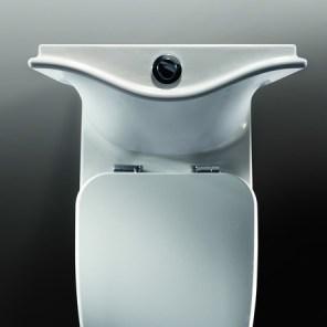 Imagen del inodoro Frontalis visto desde arriba