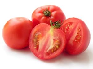 tomatoes vidya sury