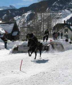 skijoring Feb 2011