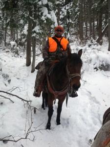 Horseback hunt