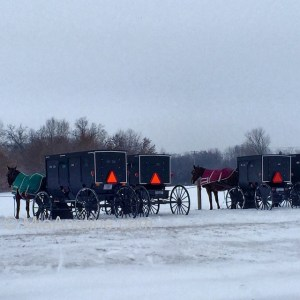 Amish-Buggies-by-Mia-Anstine