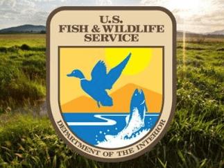 US-Fish-and-Wildlife