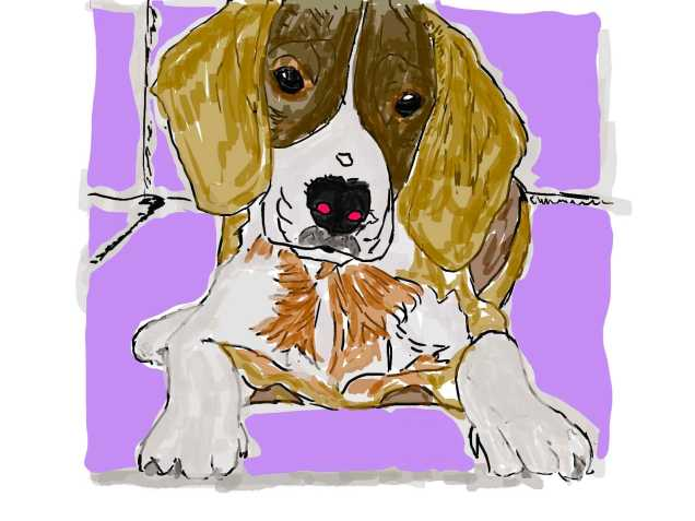 digital dog painting from photo