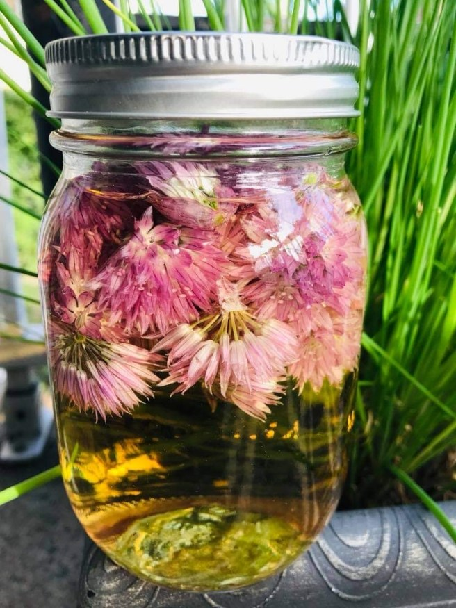 An easy way to enjoy beautiful chive flowers