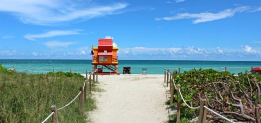 Miami Go Card