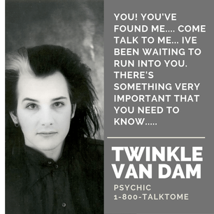 Twinkle Van Dam: Psychic for Hire