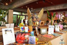 Bali Ha'i - Silent Auction