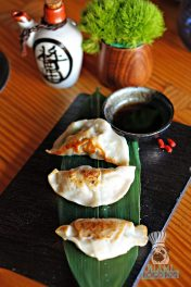 Tanuki - Brunch - Chicken and Pork Gyoza 2