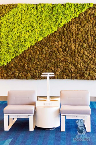 Brightline - Select Lounge Green Wall